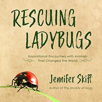 Rescuing Ladybugs